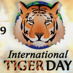 Global Tiger Day July 29th