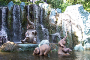 World Elephant Day awareness day